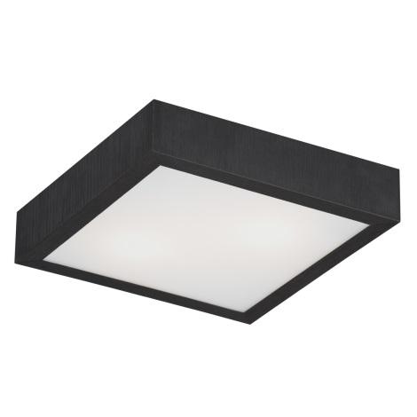 Argon 0723 - Stropné svietidlo TEQUILA BIS 2xE27/60W/230V