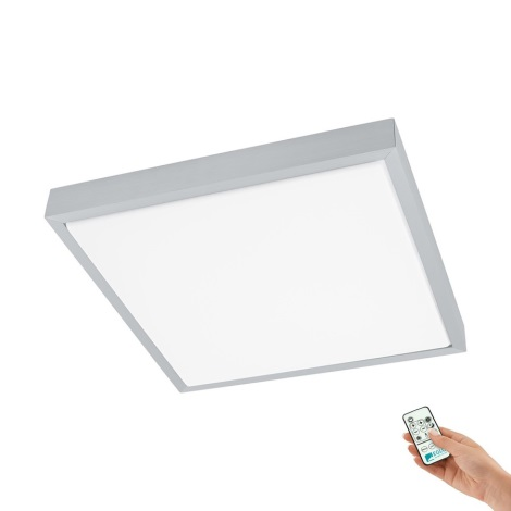Eglo 93942 - LED stropné svietidlo IDUNA 2 LED/18W/230V