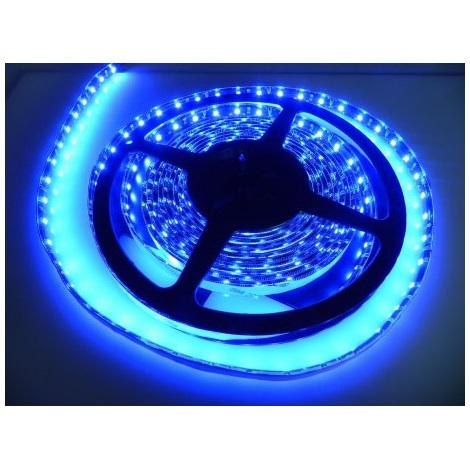 LED pásec vodotesný 5m IP65 modrá