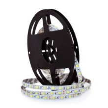 LED Pásik 5m 45W/12V IP20 6000K
