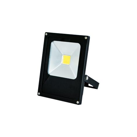 LED reflektor DAISY MCOB 1xLED/20W - GXDS101