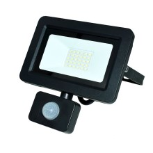 LED Reflektor so senzorom LED/30W/230V IP65 6000K