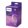 LED Žiarovka VINTAGE Philips E27/6W/230V