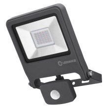 Ledvance - LED Reflektor ENDURA so senzorom LED/30W/230V IP44