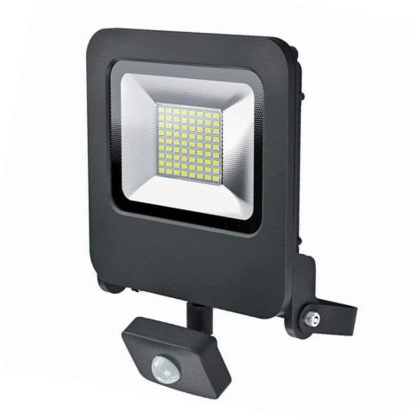 Osram - LED Vonkajší reflekor so senzorom ENDURA LED/50W/240V IP44 čierny