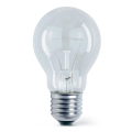 Priemyselná žiarovka E27/60W/230V