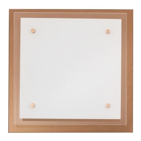 Rabalux 2476 - Stropné svietidlo CINDY 2xE27/40W/230V