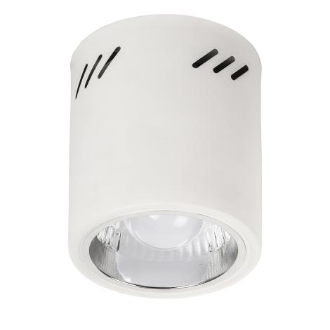 Rabalux 2484 - Podhľadové svietidlo DONALD 1xE27/60W/230V