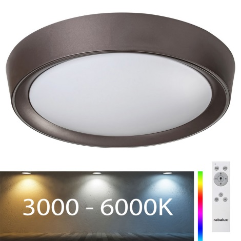 Rabalux - LED RGB Stmievateľné stropné svietidlo LED/24W/230V + DO 3000-6000K