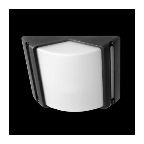 Vonkajšia stropné svietidlo CITY 1xE27/60W šedá